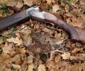 Προτάσεις της ΚΟΜΑΘ σχετικά με τη νομοθεσία περί όπλων