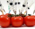 Ευρωπαϊκή πρόταση νομοθεσίας δίνει στις πολυεθνικές το μονοπώλιο των σπόρων