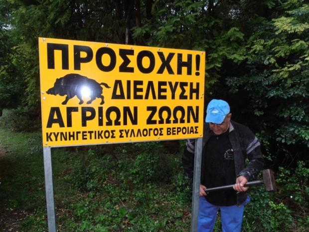 Πινακίδες για την αποφυγή τροχαίων με αγριόχοιρους από τον Κ. Σ. Βέροιας