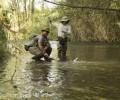 Απαγόρευση αλιείας στα εσωτερικά ύδατα της Ημαθίας