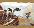 Η νέα διοίκηση του Κυνηγετικού Συλλόγου Βέροιας